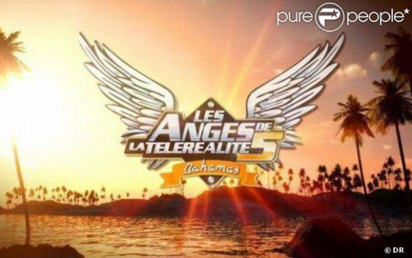 Les anges de la telerealites 5 Ce que jattends depuis longtemps