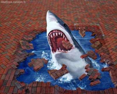 Blog De Requin 62 Page 2 Blog De Requin 62 Skyrockcom