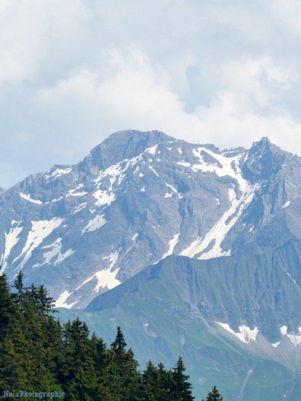 #260 La montagne
