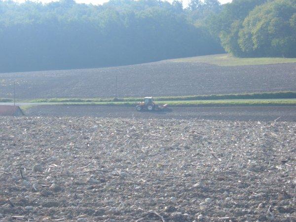 semi du blé 2010 avec un renault 103-54 tracfor et combiné machio nodet