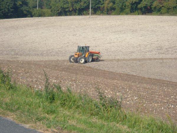 semi du blé 2010 avec un renault 103 54 tracfor et un une herse rotative machio et semoir nodet