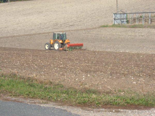 semi du blé 2010 avec un renault 103-54 tracfor et semoir nodet !!