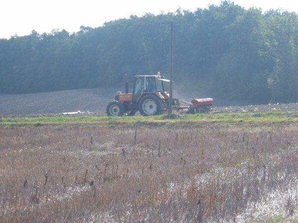 renault 103 54 tracfor et semoir nodet au semi du blé
