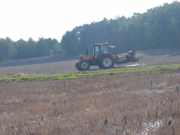 renault 103-54 tracfor et semoir nodet au semi du blé