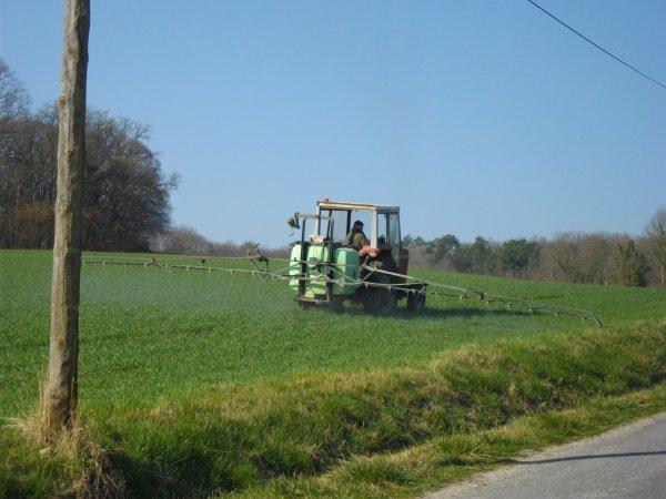 traitement des blé 2011 avec un mf 275 et un tecnoma