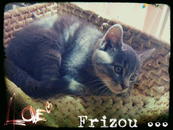 Mon frizou ♥