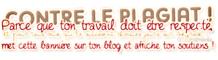 Description De Mon BloG ♥