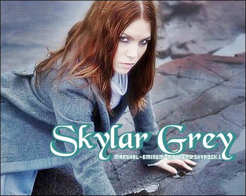 Skylar Grey Article rédigée entièrement par moi tu prend , tu crédite