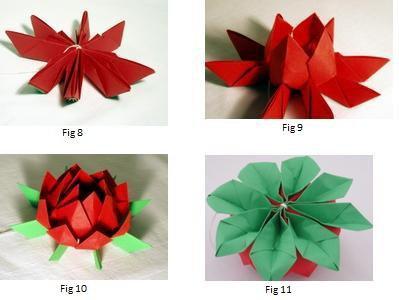 Origami Fleur De Lotus Mosaiques En Papier Praline