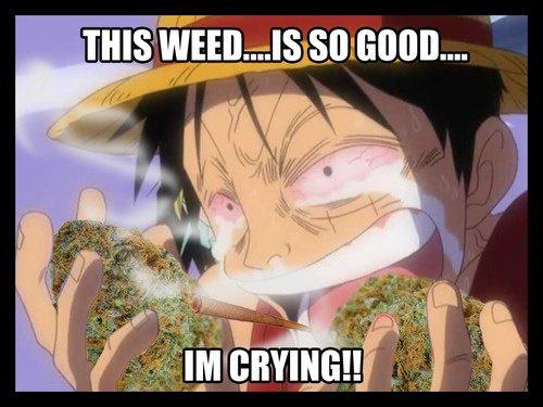luffy entrain de fumé de la weed XD
