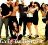Gang-Twilight-Fic