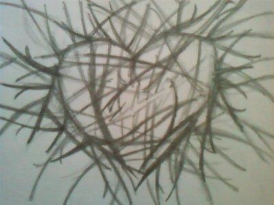 Encore un petit dessin