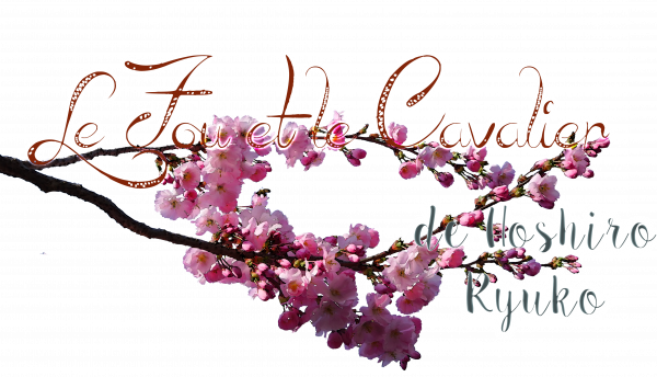 Branche n°1 : LE FOU ET LE CAVALIER, par Hoshiro Ryuko