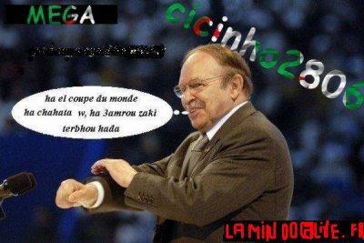 moi vivi algéria