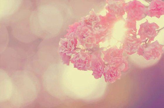 .... Un jour tu me remarqueras et m'ouvriras ton coeur[align =center] pour l'instant mon amour cour à côté de mes douleurs... .  . .