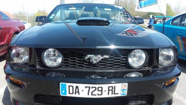 Shooting Mustang GT/CS