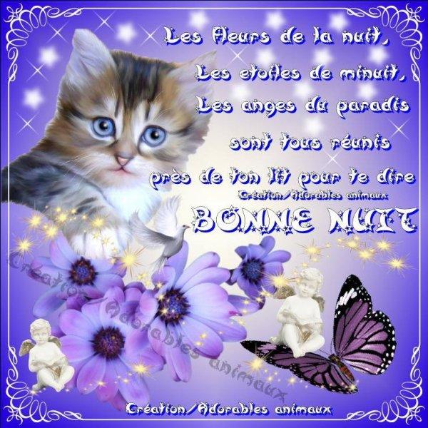 Image Bonne Nuit bonne nuit et bon week end a tous mes amies et merci 111 fanfan et