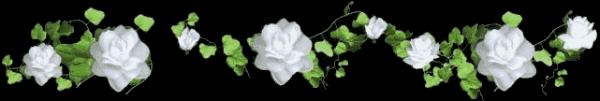 MERCI MON AMIE LOULOU ET ROMANTIQUE ET TONTONLOULL83