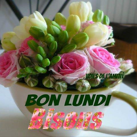 BON LUNDI ET BONNE SEMAINE A TOUS ET MERCI A MON AMIE CORAIL231 ETCOEUR 445