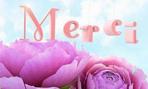 MERCI MON AMIE SYLVIE ET MARICOUH ET MANON ET CALINETTE 24