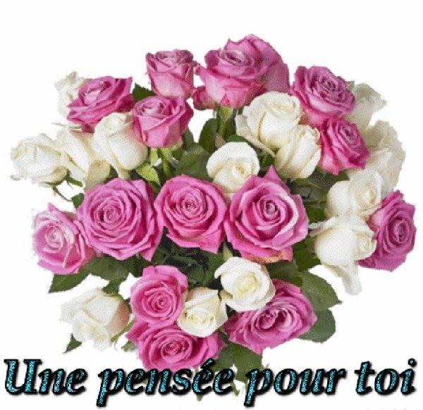 de Beaux Bouquets de Fleurs des videéo pour vous si ca vous plait prenez mes amis gros bisous MERCI MON AMI NOIRMOUTIER