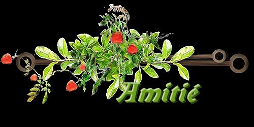 MERCI MON AMIE PHILOBERTANNICK DU 62 AMINA PRINCESSE REVEUSE