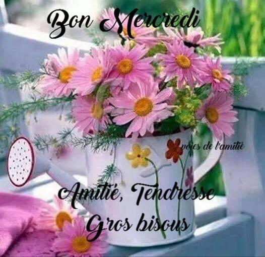 MERCI MON AMIE FANDEGAROU 1993 ET DANNY EMILIE 1106 ET CHATON 1973 ET NICKY 98