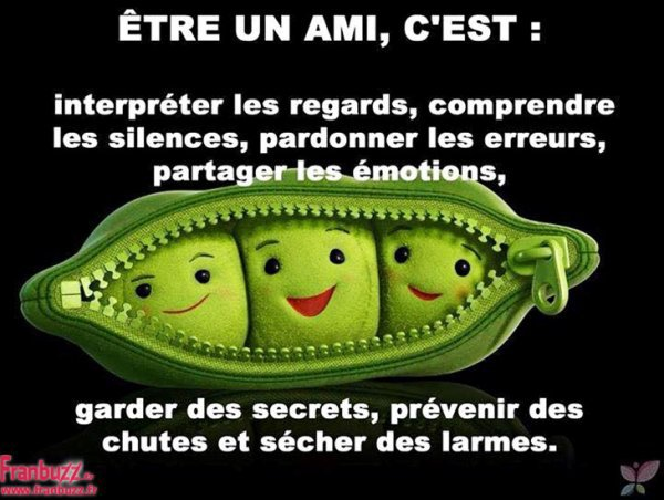 MERCI MES AMIES