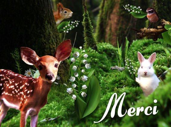 MERCI A TOUS POUR LEURS BEAUX KDO ET COMS POUR MON ANNIVERSAIRE EVELYNE