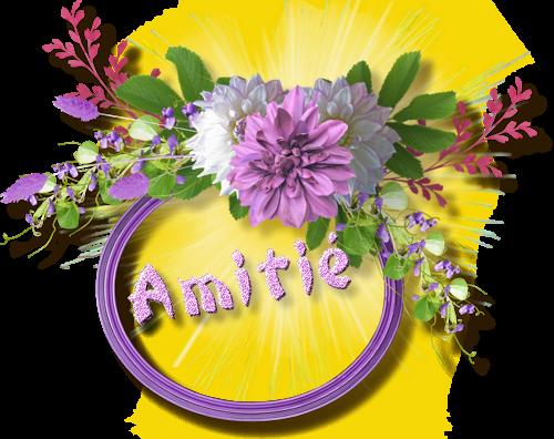 MERCI MES AMIES