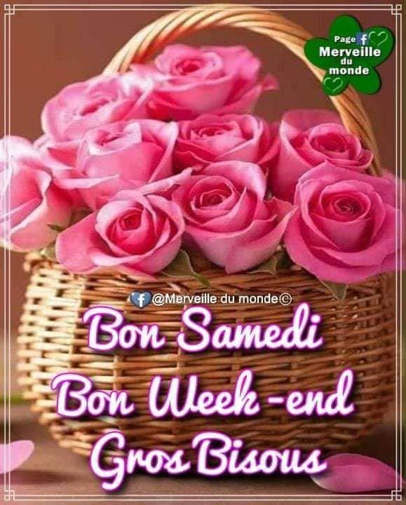 BON.SAMEDI ET UN BON WEEK END  ET  MERCI MES AMIES