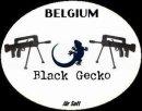 Photo de black-gecko