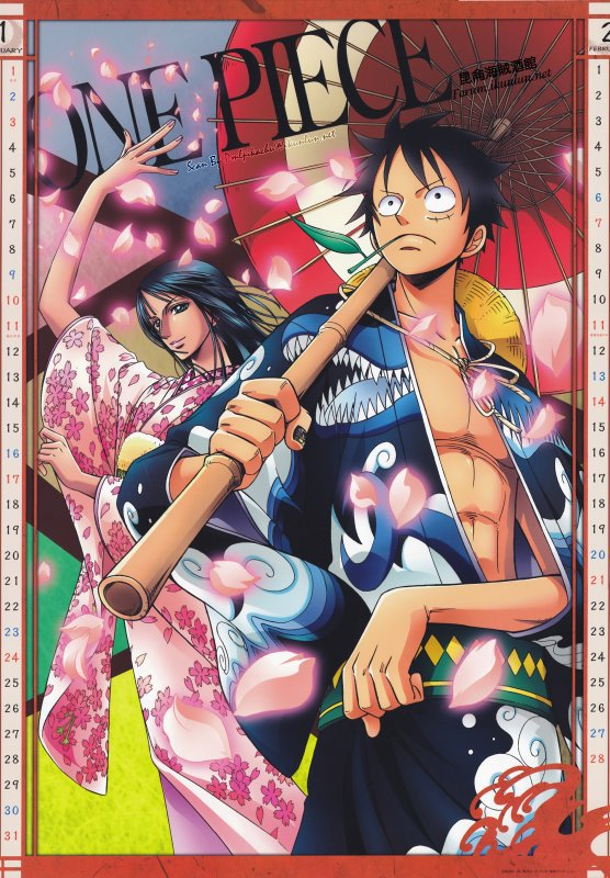 One Piece divers 11