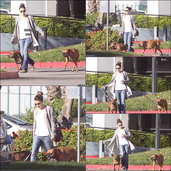 """Le 21/11 : Jessica a été aperçue avec ces chiens aux alentours de l'aéroport """"The Van Nuys"""" à Los Angeles Elle porte encore ce manteau gris que j'avais pas aimer les jours précédents mais sur cette tenue il passe mieux car il est ouvert. J'aime bien quand elle se fait le chignon sans se laisse la frange donc même ces cheveux c'est top. Pour le reste de sa tenue, j'adhère pour la simplicité et cette simplicité c'est ce qu'il lui va le mieux et puis elle a toujours ces chaussures/ballerines que j'adore. Alors ça sera un TOP."""