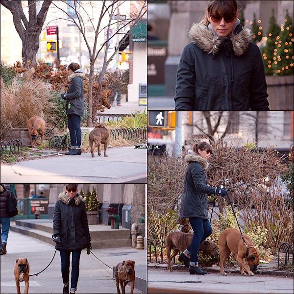 Le 15/12 : Jessica a été aperçue promenant ces chiens dans les rues new-yorkaises Jess est habillée simplement, logique encore une fois, elle est pas censée s'habiller sur le 31 pour promener des clébards. J'aime beaucoup son manteau, son jean's et ces chaussures meme si je trouve qu'elles vont pas avec un jean's relevé comme ça. J'aime pas quand Jess attache ces cheveux mais c'est UN TOP quand même.