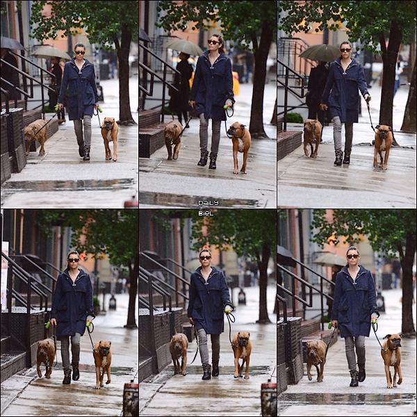 Le 07/06 : Jessica a été aperçue dans les rues de New York se baladant avec ces chiens (encore)