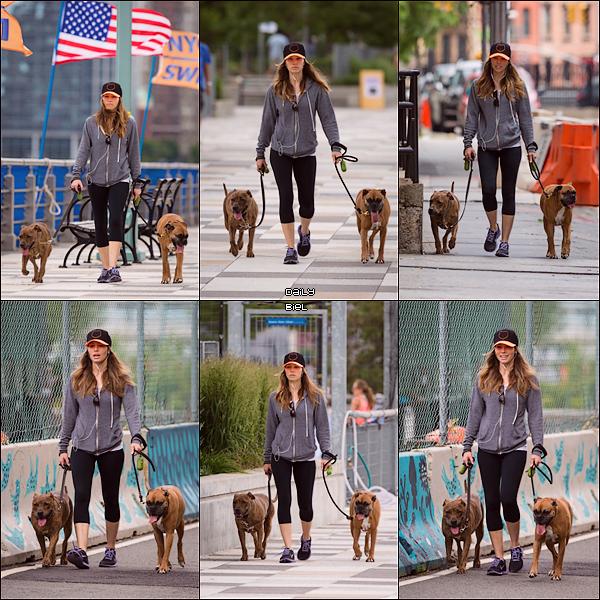 Le 08/06 : Jessica a été aperçue marchant avec ces chiens dans les rues de New York