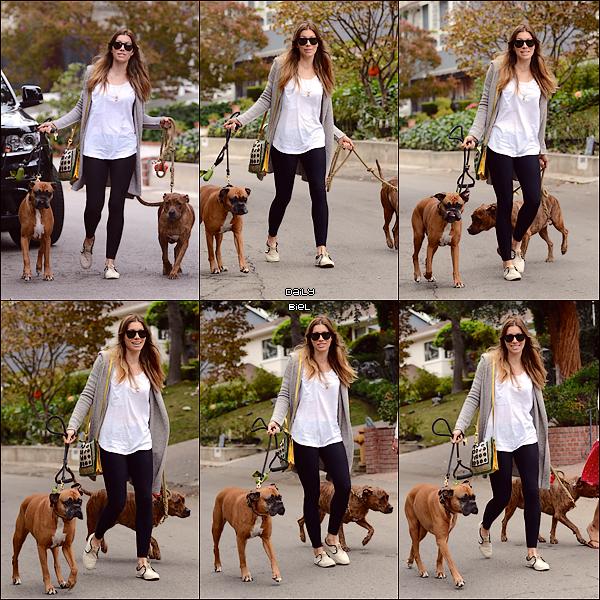 Le 13/10 : Jessica a été aperçue, avec Michelle Purple, se promenant avec ces chiens à Studio City