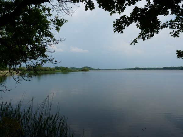 La Brenne - l'étang de la Mer Rouge