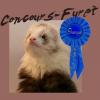 Concours-furet