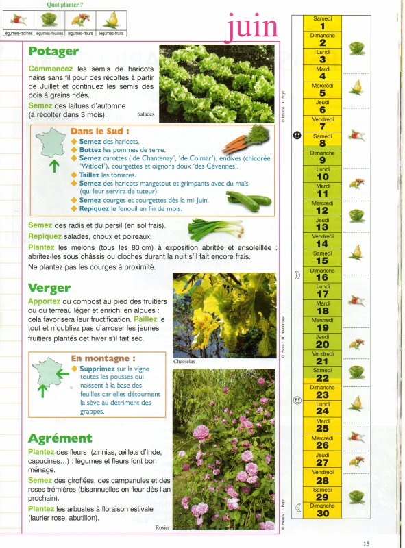 Calendrier juin blog du jardinier amateur for Calendrier jardin juin 2015