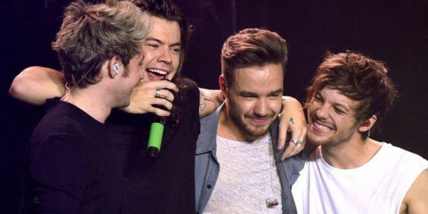 """C'est la fin d'une époque pour les One Direction ! Plus de 6 mois après le départ de Zayn Malik, le groupe a décidé de faire un break, histoire de pouvoir passer du temps avec leurs proches et de se consacrer à d'autres projets. Mais si cela signifie un peu de calme et de repos pour ceux que leurs fans appellent les """"Boys"""", pour les Directioners (fans des One Direction, ndlr), c'est tout simplement un désastre ! Et oui : comment vont-ils (et surtout comment vont-elles) survivre toute une année sans leur groupe préféré ? Les différentes communautés de fans se sont déjà fait des promesses : continuer à échanger en attendant le retour de leurs chanteurs adorés, notamment grâce au hashtag #PromiseDirectioner. Leur dernier concert, un grand moment d'émotion Ce samedi 31 octobre, les One Direction ont donc donné leur tout dernier concert avant cette pause, devant une assemblée de fans éplorés. Au programme : chansons, larmes et câlins, aussi bien du côté du public que sur scène. Le dernier câlin des Boys a mis du baume au coeur des fans, qui peuvent se rassurer grâce aux déclarations de l'un des membres du groupe, Louis Tomlinson : """"Nous avons absolument l'intention de revenir"""". La question est de savoir quand…"""