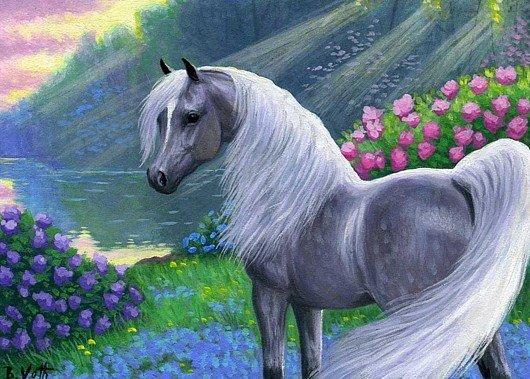 .chevaux,poulains et monture
