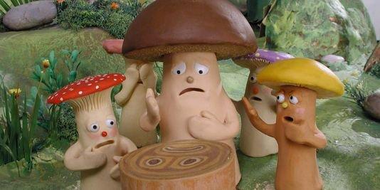 .champignons magique