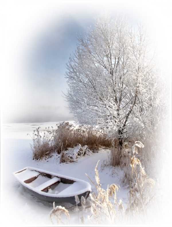 images hivernal