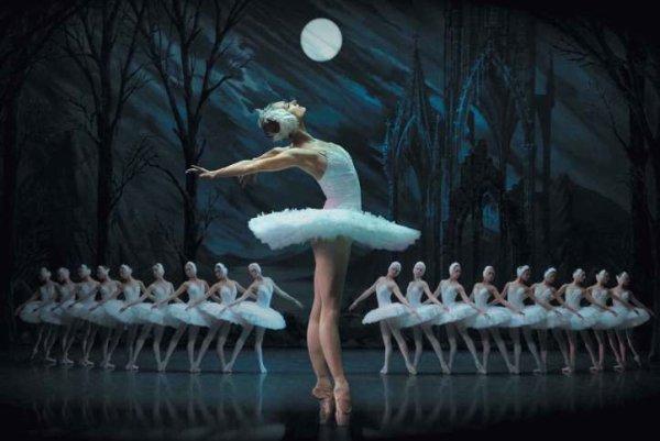 danseurs,danseuses