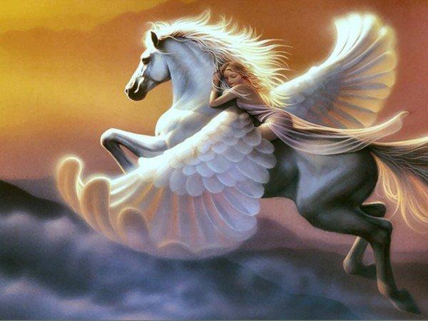 chevaux ailées