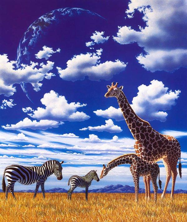 giraffes et leurs petits