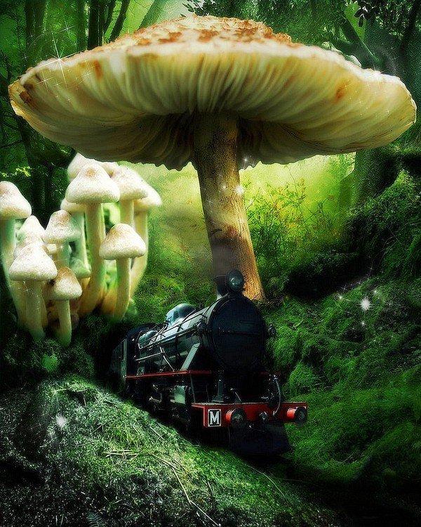http://mamzouka.com/512-les-aventures-de-tintin-le-secret-de-la-licorne-en-streaming.html