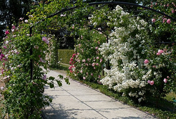 esprit jardin